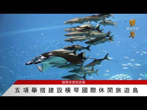 橫琴快訊五項舉措建設橫琴國際休閒 ...