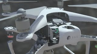 Rescue of the drone DJI Phantom 4 from a collision with a tree at RTHThe DJI Phantom is a great platform for beginners.