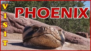Phoenix (AZ) United States  City new picture : Visit Phoenix, Arizona, U.S.A.: Things to do in Phoenix - Valley of the Sun