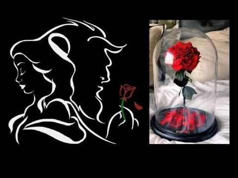 Beauty And The Beast Floating Rose Hot Videos 2018