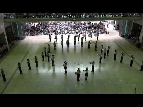 ザ・ワールド・オブ・ブラス2015 野田市立第一中学校