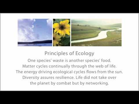 Ecological Literacy: Part 3