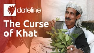 Video Khat: Yemen's Addictive Narcotic Chewing Leaf MP3, 3GP, MP4, WEBM, AVI, FLV Februari 2019