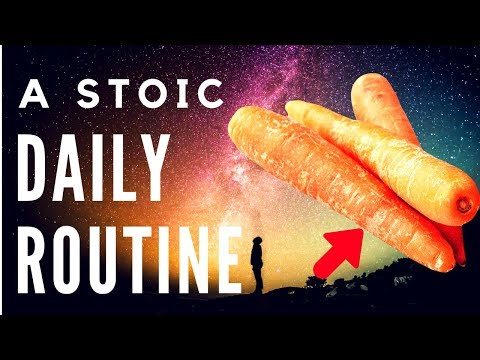 12 Ways To Become A Perfect Stoic (How To Be A Stoic/Practical Stoicism)