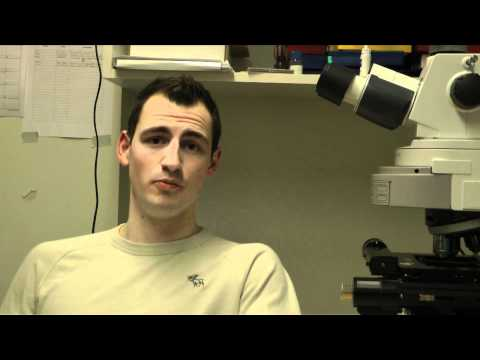 Watch Video: Zack Patterson explains his research on obesity