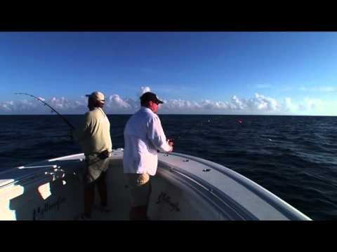 Yellowfin Yachts - Fishing out of Islamorada, FL, John Brownlee of Saltwater Sportsman and Kevin Barker of Yellowfin Yachts get lit up by a couple of Atlantic sails. Capt. Nick...