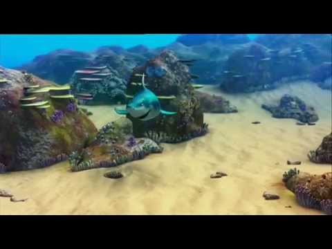 THE REEF 2 - HIGH TIDE