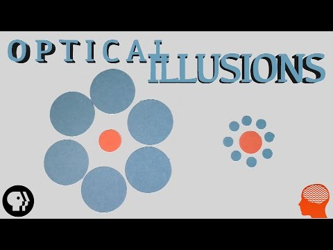 Can You See These Optical Illusions?