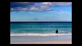 Binalong Bay Australia  City new picture : Jake Surf Binalong Bay Tasmania 2014