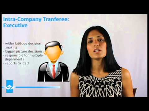 Intra Company Transferee Work Permit for Executives Video
