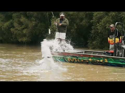 New Legendary Catch S1 Launch Promo