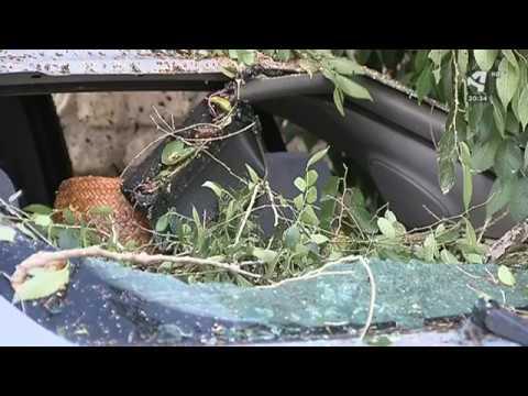 Un vendaval provoca graves daños en Longares (Zaragoza)