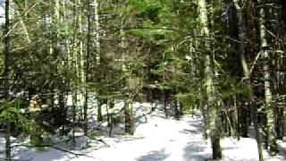5. 1989 ski doo tundra Lt