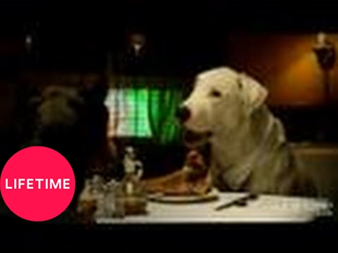 Dogs Parody The Greatest Movie of All Time, The Godfather