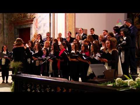 Encontros de Coros Ilha Terceira 2014