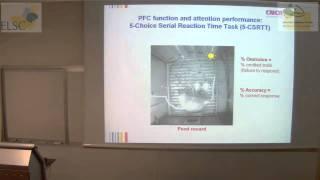 ELSC-ICNC Seminar - Huib Mansvelder