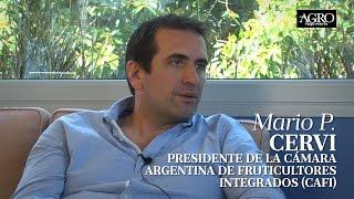 Mario P. Cervi - Presidente de CAFI