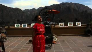 Exhibition Visonary Contemporain Artists, 2014 Mexico, SPANISH