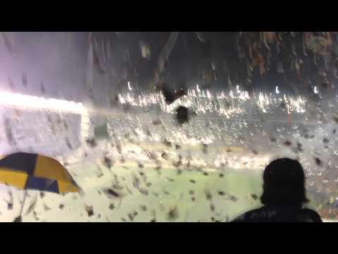 Sale Boca y la bombonera explota!! - La 12 - Boca Juniors