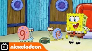 SpongeBob SquarePants | Snail Sanctuary | Nickelodeon UK