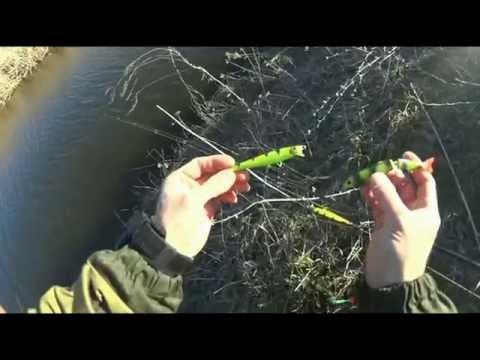 ловля щуки в ростове на дону места