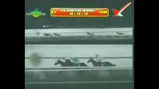 RACE 1 JAZZ WILD 10/14/2014