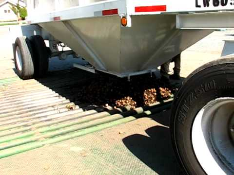 How walnuts are harvested and processed. Actually pretty interesting. [9:55]