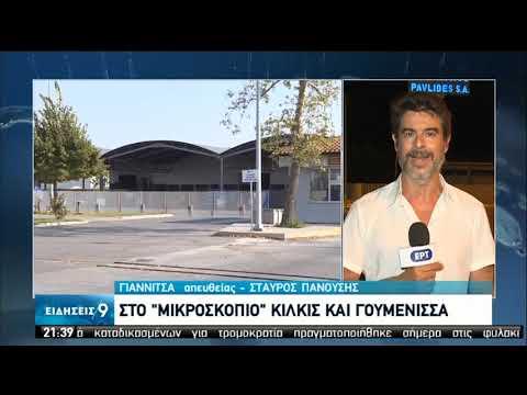 Κορονοϊός | Κρούσματα σε εργοστάσιο κονσερβοποιϊας | 08/09/2020 | ΕΡΤ