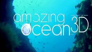 Critique combo Blu-ray 3D/Blu-ray 2D Amazing Ocean 3D