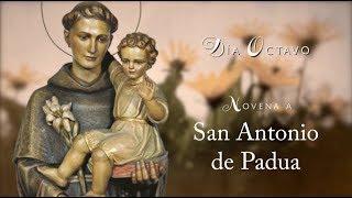 DÍA 8 - NOVENA SAN ANTONIO DE PADUA