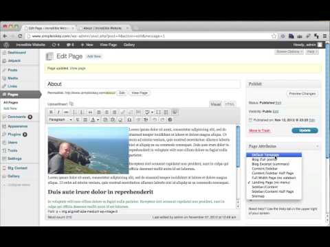 how to use wordpress.org