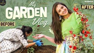 My Garden Vlog | Vegetables | Flowers | Organic Gardening | Lasya Manjunath |