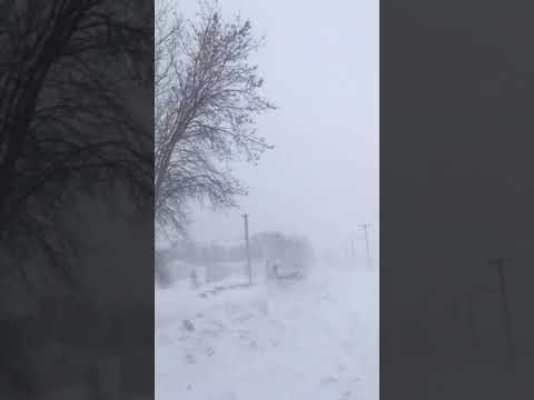 Snowstorm whips through southern Manitoba