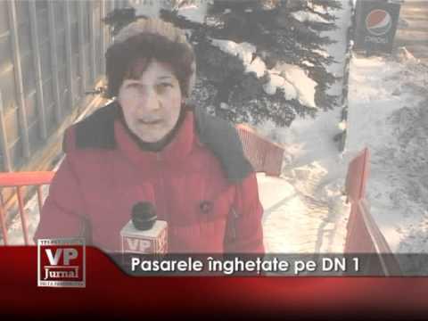 Pasarele îngheţate pe DN 1