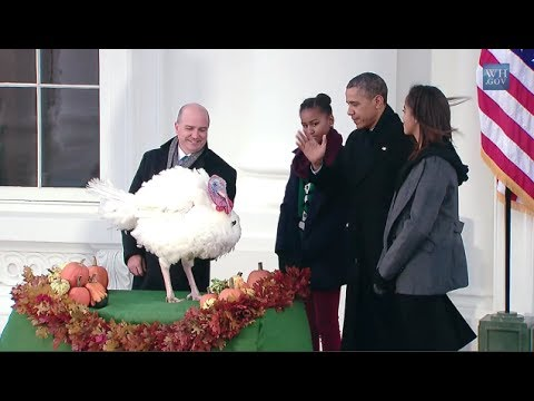 Obama Pardons Minnesota Turkeys