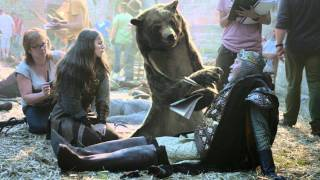 "Canal+ ""The Bear"" by BETC Paris       - YouTube"
