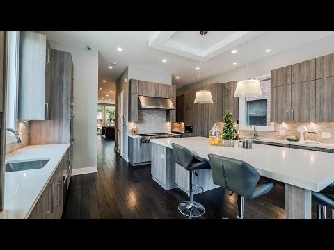 A spacious, new, open-plan Lincoln Park single-family