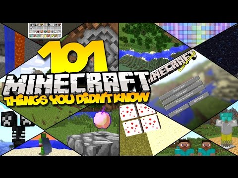101 Things You Didn't Know About Minecraft