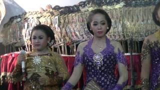 Sinom Nyamat Sikucing - Dimas Niken Salindri (Wayangan) Video