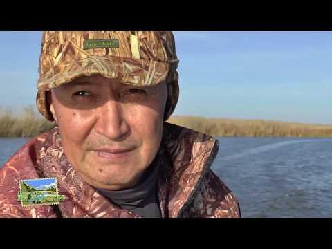 видео. рыбалка на щуку на тургае