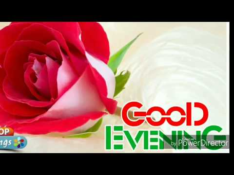 Good evening messages - GOOD EVENING WHATSAPP STATUS FOR YOU