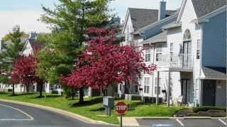 Elkton (MD) United States  City new picture : Stonegate - Apartments for Rent in Elkton, MD