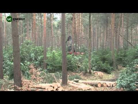 Sustainable woodland management