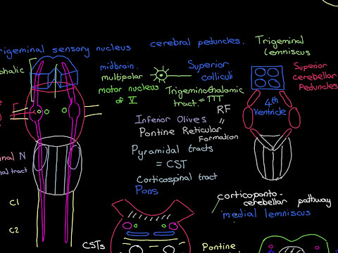 Headaches Part 8
