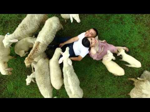 Video clip cưới Hồ Cốc