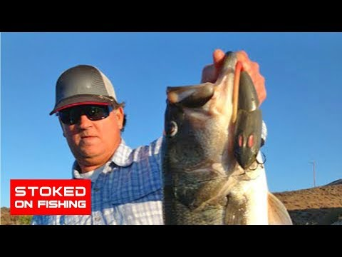 Largemouth Bass Fishing With A Rat