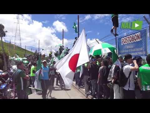 VIDEO MOTIVACIONAL FINAL DE COPA LIBERTADORES - Los del Sur - Atlético Nacional