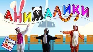 Самолёты. АНИМАЛИКИ!. Танец игра с ускорением, видео для детей