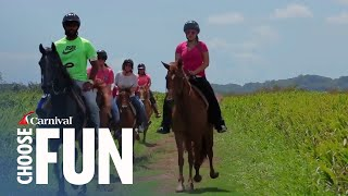 Saddle up and sit on a beautiful and gentle Paso Fino horse as you explore the countryside in San Juan, Puerto Rico.