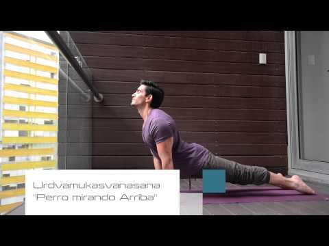 """Posturas Yoga """"Cobra y Perro Mirando arriba"""" con Ro Hedding"""